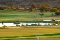 The Bullseye – DraftKings European Tour GPP Preview – Tshwane Open