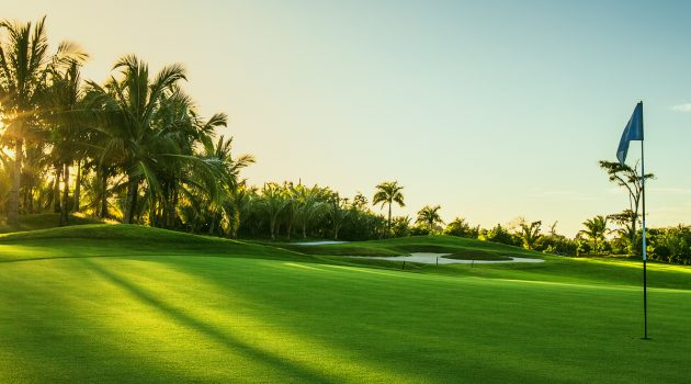 Fantasy Golf Tournament Preview- Sony Open